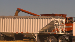 HD2009-9-32-11 grain truck and combine Footage