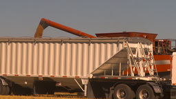 HD2009-9-32-11 grain truck and combine Stock Video Footage