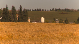 HD2009-9-32-13 grain harvest combine Stock Video Footage