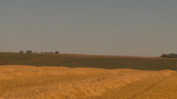 HD2009-9-32-15 grain harvest combine WS Stock Video Footage