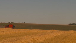 HD2009-9-32-15 grain harvest combine WS Footage