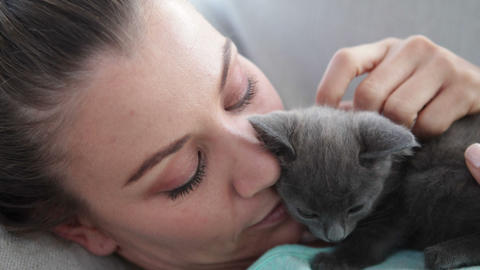 Smiling Woman Lying On Couch Cuddling Tiny Kitten stock footage