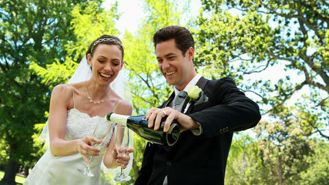Newlyweds drinking champagne in the countryside Footage