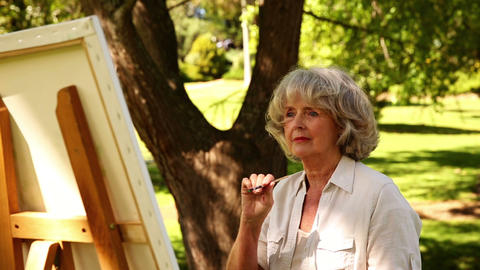 Retired Woman Painting Outside stock footage