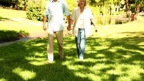 Retired Couple Walking In The Park stock footage