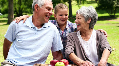 Happy senior couple relaxing in the park with their granddaughter Footage