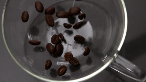 Coffee beans pouring into glass cup Footage
