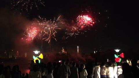 Spectators Fireworks Footage