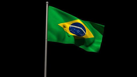 Brasil national flag waving on flagpole Animation