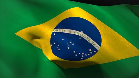 Digitally generated brasil flag waving Animation