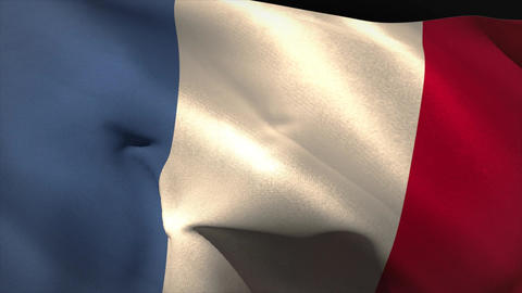 Digitally generated france flag waving Animation