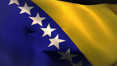 Digitally generated bosnian flag waving Animation