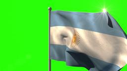 Argentina national flag waving on flagpole Animation