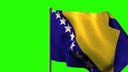 Bosnia national flag waving on flagpole Animation