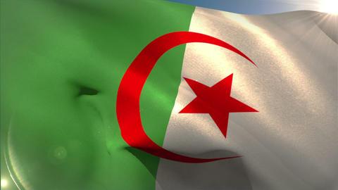 Large algeria national flag waving Animation