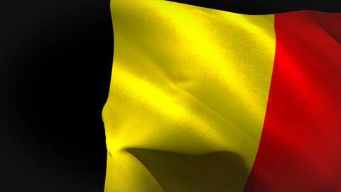 Large belgium national flag waving Animation