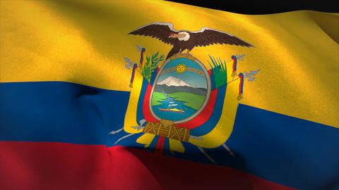 Large ecuador national flag waving Animation