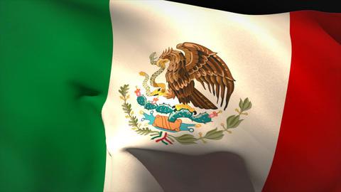 Large mexico national flag waving Animation
