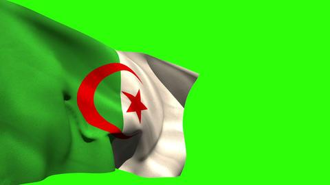 Large algeria national flag blowing Animation