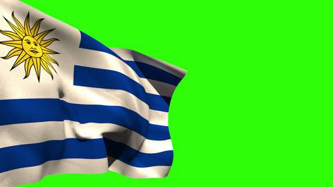 Large uruguay national flag blowing Animation