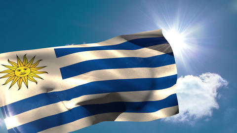 Uruguay national flag blowing in the breeze Animation