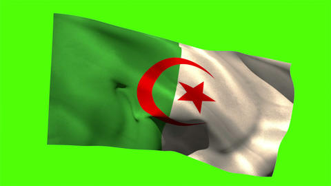Algeria national flag blowing in the breeze Animation