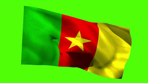Cameroon national flag blowing in the breeze Animation