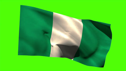 Nigeria national flag blowing in the breeze Animation