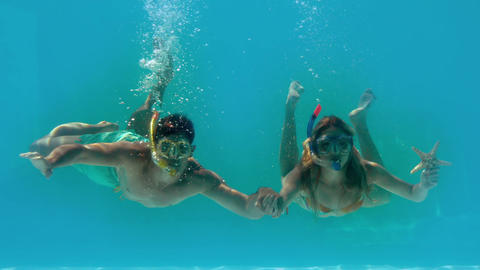 Couple wearing snorkels holding starfish underwate Footage