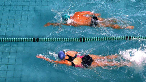 Fit swimmers racing in the swimming pool Footage