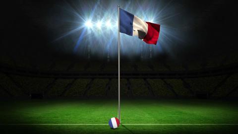 France national flag waving on flagpole Animation