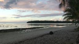 Stock Footage Tropical Shoreline Footage