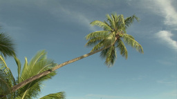 Stock Footage Tropical Island Footage