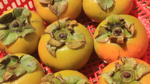 The persimmons in the basket Footage