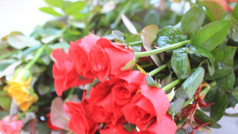 The beautiful bouquet of roses Footage