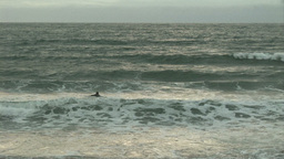 Surfing Footage