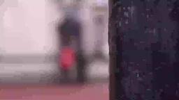 Guard at Buckingham Palace Footage