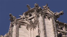 Gargoyles On NotreDame stock footage