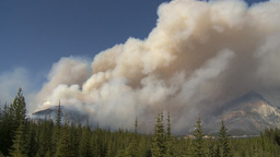 HD2009-9-37-1 Forest fire heavy smoke Stock Video Footage