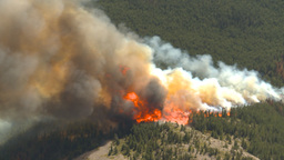 HD2009-9-37-9 Forest fire big flames aerial Footage