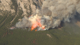 HD2009-9-37-13 Forest fire big flames aerial spectacular Footage