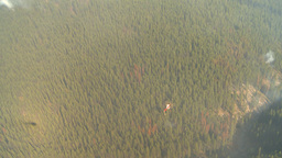 HD2009-9-39-2 aerial forest fire helo torcher Footage