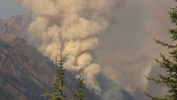 HD2009-9-40-6 forest fire thru trees spectacular Footage