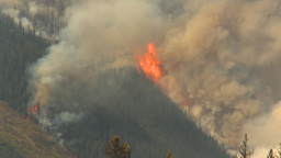 HD2009-9-40-8 forest fire helo thru frame Stock Video Footage