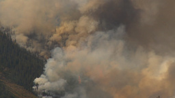 HD2009-9-40-10 forest fire audio chatter Stock Video Footage