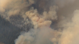 HD2009-9-40-12 forest fire Stock Video Footage