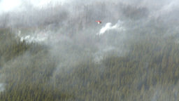 HD2009-9-40-18 forest fire helo and torcher Footage