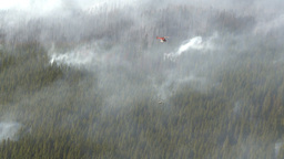 HD2009-9-40-18 forest fire helo and torcher Stock Video Footage