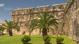 HD2008-8-12-30 Bermuda old fort palms Stock Video Footage