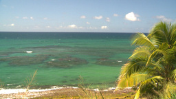 HD2008-8-14-20 San Juan beach surf palms Stock Video Footage